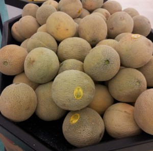 The quest to ensure safe cantaloupe